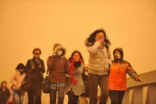 Sandstorm 4 xinhua