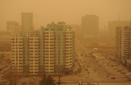 Sandstorm 5 xinhua